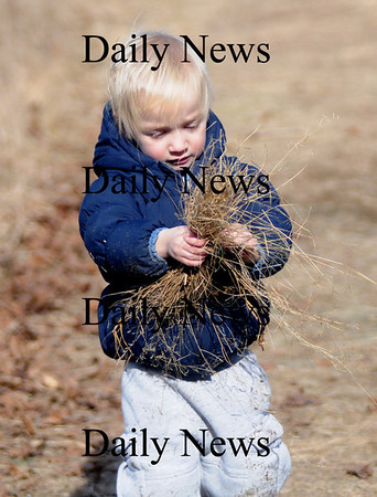 Newburyport: Josiah Lowell , 2, gathers hay to help build an eagles nest at the Joppa Center  in Newburyport during the annual Eagle Festival Saturday. JIm Vaiknoras/Staff photo