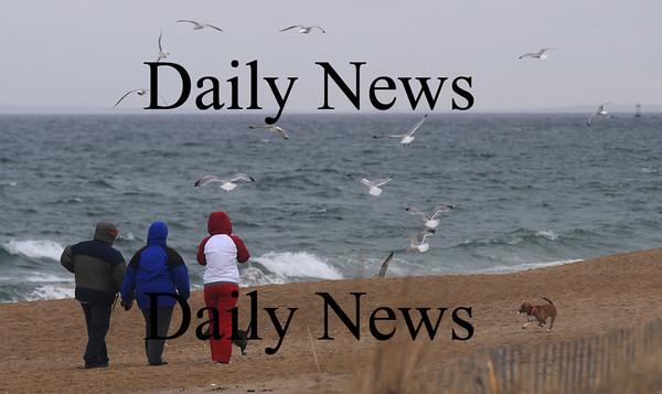 Salisbury: People and dogs and gulls enjoy a windy Sunday afternoon on Salsibury Beach. Jim Vaiknoras/Staff photo