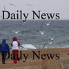 Salisbury: People and dogs and gulls enjoy a windy Sunday afternoon on Salsibury Beach. Jim Vaiknoras/Staff photo