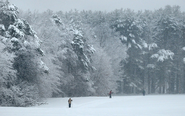 Newburyport: The heavy, wet snow that has fallen has created some nice scenery for those cross-country skiing at Maudslay State Park in Newburyport yesterday morning. Bryan Eaton/Staff Photo