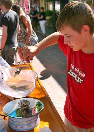 Newburyport: Brandon Smolla, 11, visiting from Maryland, selects an oyster at Gabrielle's Wish Pearls, a craft stand on Inn Street. The oyster contains a pearl with is then used to create an original piece of jewlery. Photo by Ben Laing/Staff Photo