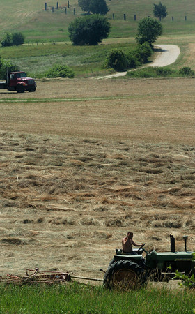 Amesbury: A tractor operator uses a tedder to spread hay around on the east side of Woodsom Farm on Wednesday morning. The west side was moved last week to make room for fireworks watchers on Sunday despite some hoping to delay the mowing to protect bobolinks and their nests. Bryan Eaton/Staff Photo