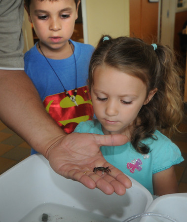 Newburyport; Courtney  Broussieau, and her brother Joshua, 7, look at an Asian short crab being held by their dad Arthur at the Joppa Center in Newburyport Wednesday. The center has drop in hours were kids can learn about marine life. Jim Vaiknoras/Staff photo
