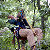 West Newbury: Curt Palmateer of Mass. Fish and Wildlife pulls himself up the rope attached to the top of the pine tree where the eagle's nest is located. Bryan Eaton/Staff Photo