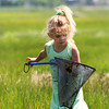Newbury: Molly McGee, 4, of Gardner checks her net Wednesday afternoon as she and her mom check out the marsh along the Plum Island River for frogs. Photo by Ben Laing/Staff Photo