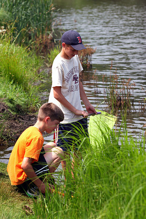 Newbury: Nick Cutrone, right, and his younger brother, Will, of Newburyport, explore Quills Pond in Newbury Monday morning, hunting for frogs, fish and turtles along the shoreline. Photo by Ben Laing/Staff Photo