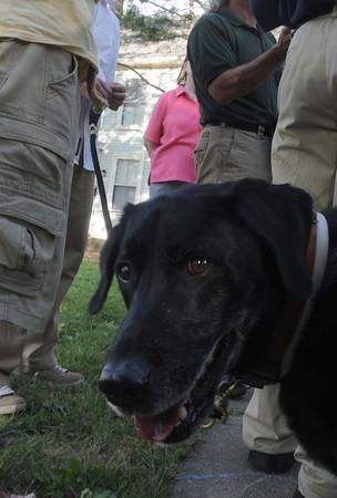 Newburyport:Diego, who belongs to Greg Collins of Newburyport checks out the crowd at an information meeting held Atwood Park in Newburyport dog waste. Jim Vaiknoras/Staff photo