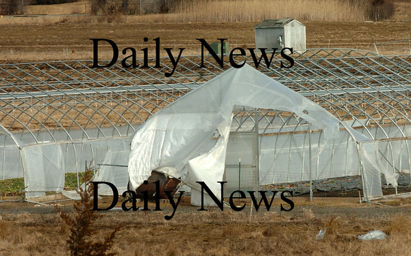 Newbury: Greenhouses of Tendercrop Farm which are located off Parker Street were ripped apart by the wind storm last week. Bryan Eaton/Staff Photo