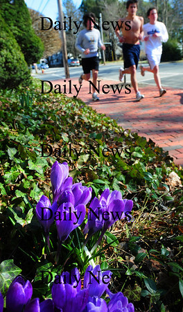 Newburyport: Despite yesterday's cool, windy weather there were signs of spring as members of Newburyport High School's track team headed back to the school past some flowering crocuses on High Street. Today is the pick of the week as the sun should warm temperatures into the low 60's before a front comes through cooling things down for the early part of the  weekend. Bryan Eaton/Staff Photo