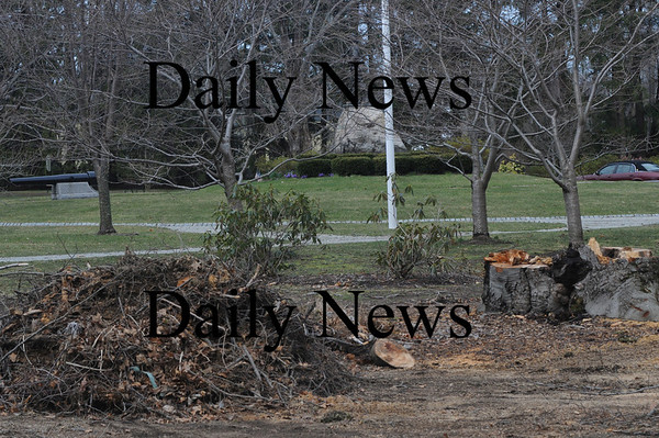 Newburyport: Debris from last weeks storm on atkinson Common in Newburyport; Jim Vaiknoras/Staff photo