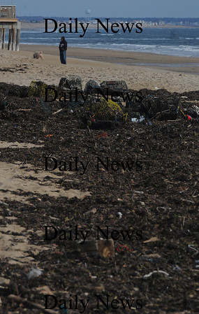 Salisbury: A man walks his dog by debris thrown up on the Salsbury Beach by last weeks storm. Jim Vaiknoras/Staff photo