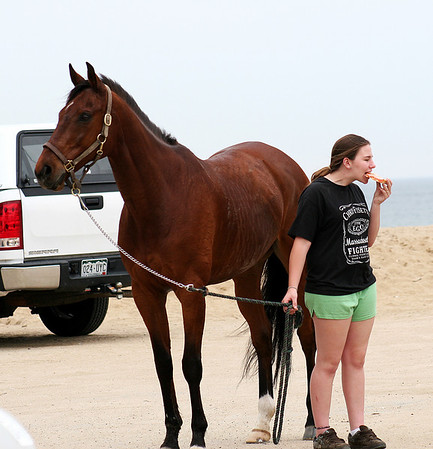 Salisbury: Erica Scally, of Amesbury,  snacks on some beach pizza while spending Monday afternoon at Salisbury Beach with her horse, Sammy. Photo by Ben Laing/Staff Photo