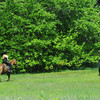 Newburyport: A pair of horse and riders make their way through Maudslay early Sunday morning. Jim Vaiknoras/Staff photo