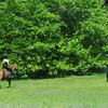 Newburyport: A pair of horse and riders make their way through Maudslay early Sunday morning. Jim Vaiknoras/Staff photo