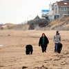 Newbury: A couple walk their dogs along an empty Plum Island Monday afternoon. Photo by Ben Laing/Staff Photo