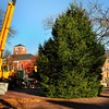 Newburyport: The Newburyport Department of Public Services installs this year's Christmas tree in Market Square yesterday morning. The tree was donated by Michael and Paula Kelley of Fox Run Drive. Bryan Eaton/Staff Photo