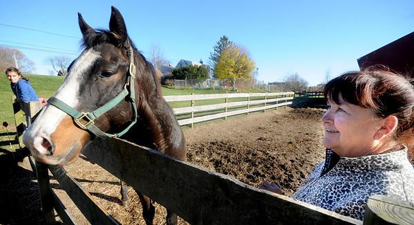 Newbury: Julie Price with one of her horses Montoya and her helper Sarah Novelle, 13, at the Oak Valley Farm in Newbury. Montoya is direct desendent of Triple Crown winner  Secretariate.  Jim Vaiknoras/Staff photo