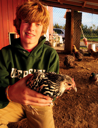 Newburyport: Orren Fox, 13, of Newburyport with his Topsfield Fair prize winning hen, a Silver-Spangled Hamburg. Bryan Eaton/Staff Photo