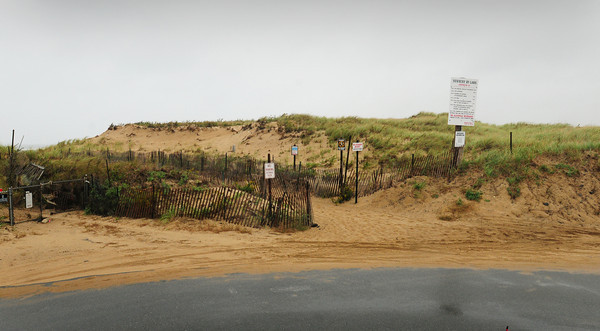 Newbury: The northern edge of a five acre parcel of land that the town of Newbury owns and want to sell at the south end of Southern Boulevard on Plum Island. Bryan Eaton/Staff Photo