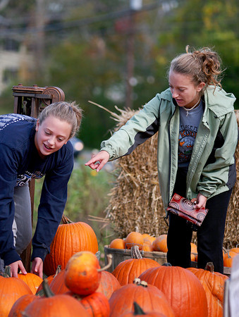 West Newbury: Emma Vargo, left, and her sister, Sara, both of West Newbury, pick out some pumpkins at the Brown Spring Farm on Main Street Monday afternoon. Photo by Ben Laing/Staff Photo