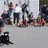 West Newbury: Officer Tom Nichols and KBar of the Amesbury police dept put on a demostration at the West Newbury Public Safety Day at the fire station Saturday. Jim Vaiknoras/Staff photo