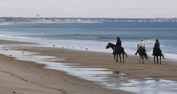 Salisbury: A trio of equestrians  make their way down Salisbury Beach Saturday morning. Jim vaiknoras/Staff photo
