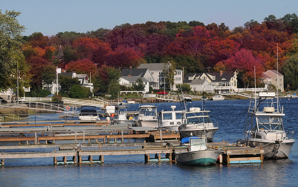 Amesbury: Foliage covers the banks of the Merrimack River along Main Street in Amesbury. Jim Vaiknoras/Staff photo