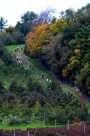 Amesbury: Runners make their way through the orchard at the Cider Hill Farm at the 3rd annual Cider Hill Mash 5k in Amesbury Sunday. JIm Vaiknoras/Staff photo