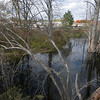 Amesbury: A beaver dam at teh the Carragetown Plaza in Amesbury. Jim Vaiknoras/staff photo