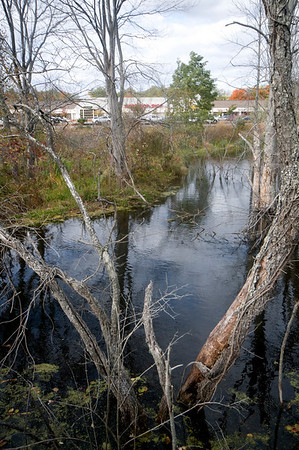 Amesbury: A beaver dam at teh the Carragetown Plaza in Amesbury. Jim Vaiknoras/staff photo