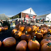 Amesbury: People enjoy a brisk day shopping at the Cider Hill Farm in Amesbury Sunday morning. Jim Vaiknoras/Staff photo