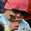 Amesbury:A butterfly rests on Kate O'Neill's finger at the Fly-Away Festival at Woodsom Farm Sunday. Kate was in the hospital with Lucy Grogan, who died of cancer in 2006 and inspired the event. Jim Vaiknoras/Staff photo