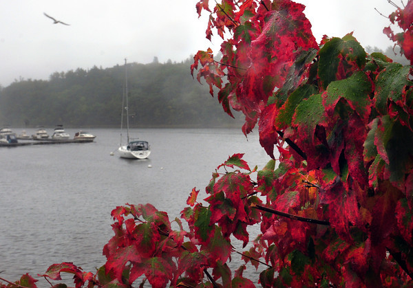 Amesbury: Leaves are beginning to turn into the colors of fall throughout the area, here, along the Merrimack River in Amesbury just west of Hatter's Point. Bryan Eaton/Staff Photo
