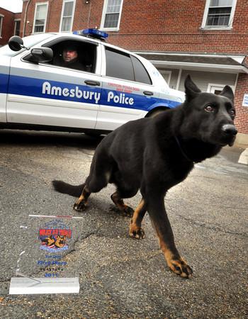 Amesbury: Amesbury police officer Thomas Nichols and his German sherphard, Kaybar, won top honors for canine units at a national contest in Arizona. Bryan Eaton/Staff Photo