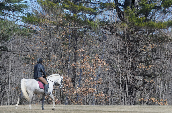 Newburyport: A horse and rider stroll through Maudslay State Park Sunday morning. Jim Vaiknoras/Staff photo