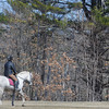 Newburyport: A horse and rider stroll through Maudslay State Park Sunday morning. Jim Vaiknoras/Staff photo