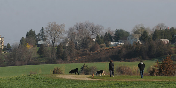 Amesbury: tree dogs and two people head out for an early morning stroll on Woodsom farm in Amesbury Sunday. Jim Vaiknoras/Staff photo