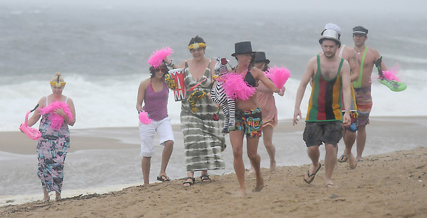 irene_7<br /> Newbury:  Alyssa Doyle of Newbury, holding the zebra, and her  husband, Olly Nolan, walk along Plum Island Beach with a few of their friends during Sunday's hurricane. The couple were married on Friday at Castle Hill in Ipswich, and decided to take some of their wedding guests, who are British, on a tour of the island. Jim Vaiknoras/Staff photo