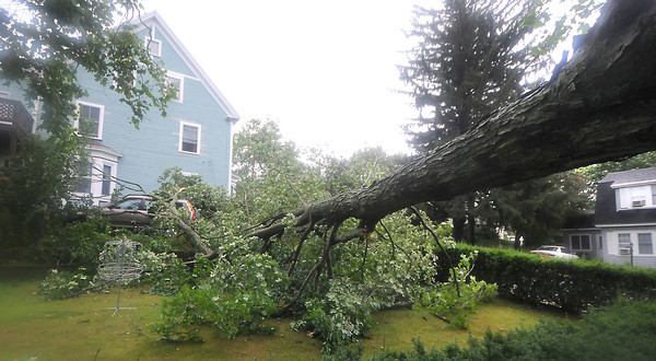 Amesbury: A fallen oak tree at 66 Prospect St. in Amesbury destroyed two cars that were parked in the driveway. Jim Vaiknoras/Staff photo