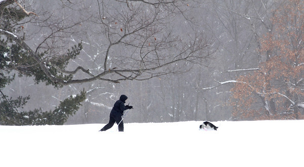 Newburyport: A cross country skier treks through Maudslay State Park, accompanied by their dog, during Wednesday's snow storm. Photo by Ben Laing/Staff Photo