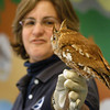 Newburyport: Martha Slone from the Audubon's Drumlin Farm shows off a screech owl at the Parker River National Wildlife headquarters. Bryan Eaton/Staff Photo