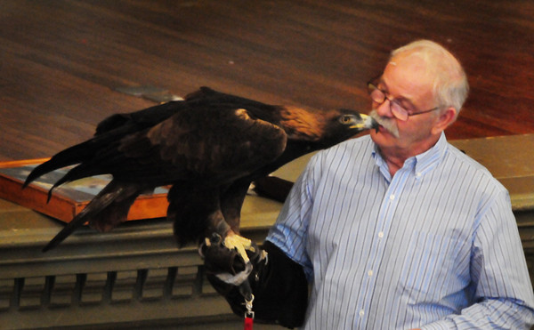 Newburyport: Tom Ricardi of the Massachusetts Bird of Prey Rehabilition Center shows off a golden eagle, which is rare in New England, upstairs at Newburyport City Hall for the Eagle Festival. Bryan Eaton/Staff Photo