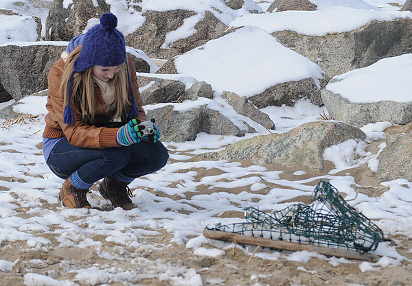 Newbury: Caleigh Begin of Groveland takes a photograph of a bashed up lobster trap Monday afternoon that had washed up on the beach on Plum Island.Caleigh is a student at Pentucket High School Jim Vaiknoras/Staff photo