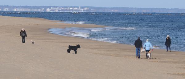 Newbury; Dogs and people walk Plum Island Beach on a beautiful cold Sunday morning. Jim Vaiknoras/Staff photo