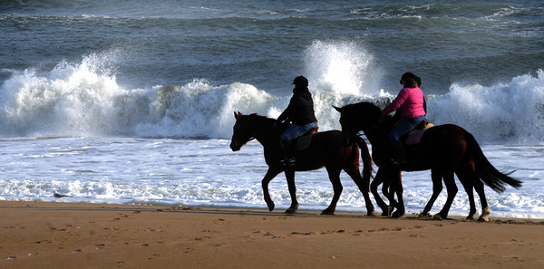 Salisbury: Waves crash behind a group of equestrians as they brave the cold early Sunday during their ride down the beach. Jim Vaiknoras/Staff photo