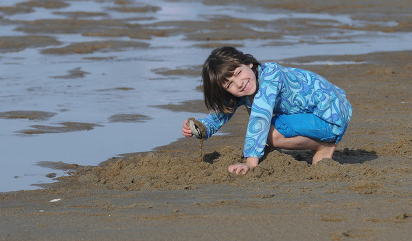 Salisbury: Georgia Wood uses a clam shell to dig in the wet sand on a unseasonably warm New Years Day on Salisbury Beach. Jim Vaiknoras/Staff photo