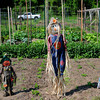 Rowley: The town of Rowley now has a community garden off Route 1A. Bryan Eaton/Staff Photo