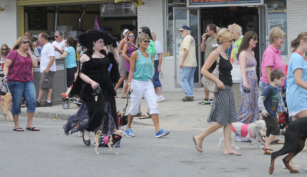 Salisbury: People walk their dogs in the Dog Parade at the Sand and Sea Festival at Salisbury Beach Sunday morning. Jim Vaiknoras/ staff photo