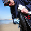 Seabrook: Volunteer Steve Johnson, who is special project coordinator for Blue Ocean Society, picks up one of many disks from the sewage plant in Hooksett at Seabrook Harbor yesterday. Bryan Eaton/Staff Photo