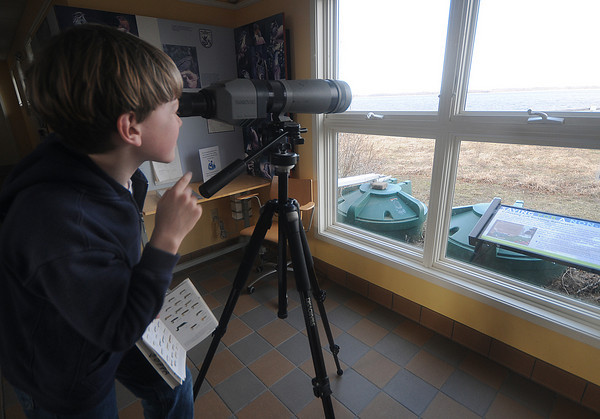 newbury: Miles Kressley, 9, of Gloucester uses one of the spotting scopes at the Audobon Center on the Plum Island Turnpike to identify a Bufflehead duck swimming out on the Merrimack River Sunday afternoon.Jim Vaiknoras/Staff photo